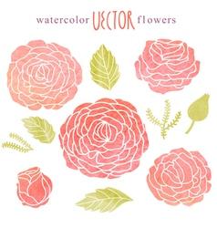 Cute watercolor rose set vector