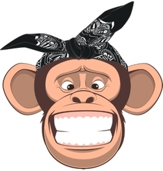 Happy monkey vector image vector image
