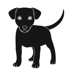 puppy labradoranimals single icon in black style vector image vector image
