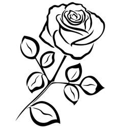 rose black outline vector image