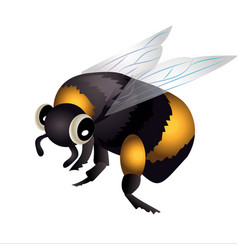 Bumblebee in flight vector
