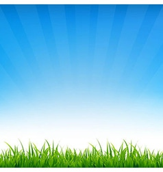 Blue Sky With Grass vector image