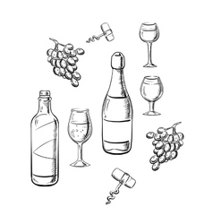Bottles of wine glasses and grape sketches vector
