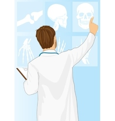 Medical doctor man pointing on tomography vector