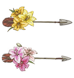 two arrows with colorful flowers lilies isolated vector image vector image