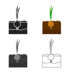 onion icon cartoon single plant icon from the big vector image vector image