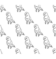 parrot on white background vector image