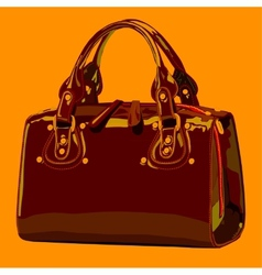 Designer female bags vector image