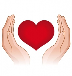 heart in hands vector image