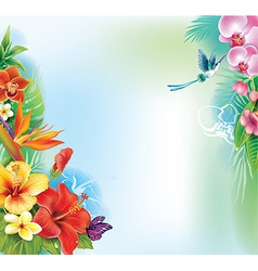 Background from tropical flowers and leaves vector image