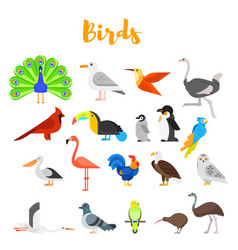 Flat style set of birds vector