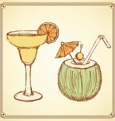 Sketch cocktail with coconut in vintage style vector image