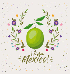 Viva mexico colorful poster with lemon fruit vector