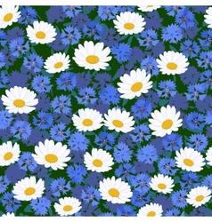seamless camomiles and cornflower pattern vector image