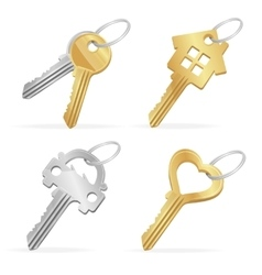 Different Keys Set vector image vector image