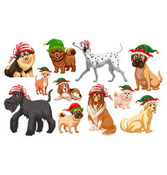 Dogs with christmas hats vector