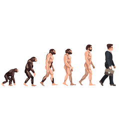 human evolution from ancient times till nowadays vector image