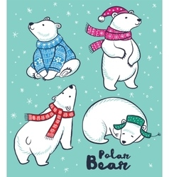 Polar Bears collection in colorful sweater scarf vector image