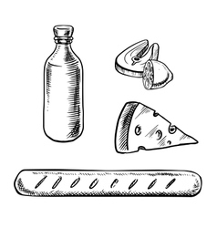 French food and drinks sketches vector