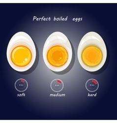 Hard-boiled eggs vector