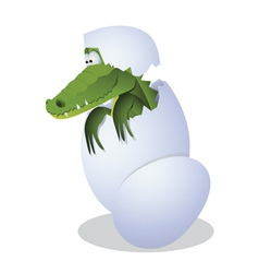 Funny crocodile hatched from eggs vector