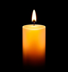 Candlelight icon vector