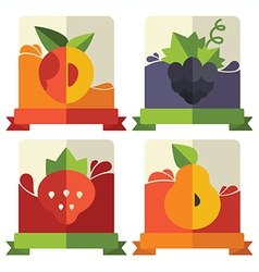 fruit and berries emblems vector image vector image