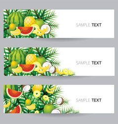 Mixed Tropical Fruits Banner vector image vector image