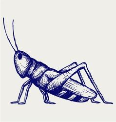 Grasshopper vector image