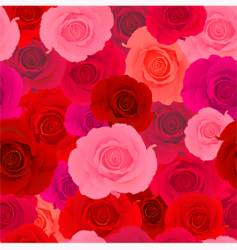 Rose wallpaper pattern vector
