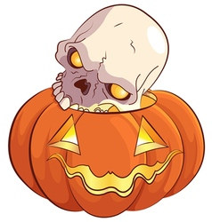 Skull and pumpkin vector