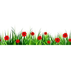 Green Grass seamless poppy vector image