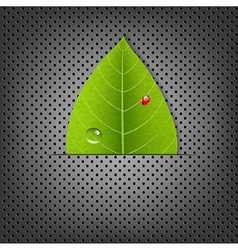 Metal background with green leaf vector