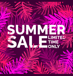 modern poster summer sale limited time only vector image