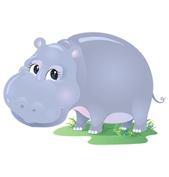 Cartoon animal hippo isolated on white vector image