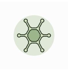 Molecule colorful icon vector