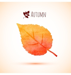 Autumn orange watercolor leaf icon vector