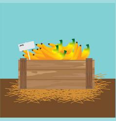 Banana in a wooden crate vector