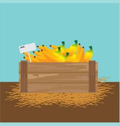 Banana in a wooden crate vector