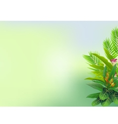 beautiful tropical forest background vector image vector image