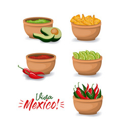 Viva mexico colorful poster with bowls of typical vector