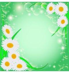 Green background with daisies and stars vector