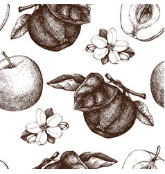seamless pattern with apple sketch vector image vector image