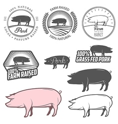 Set of pork labels badges and design elements vector