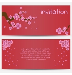 Invitation Design Template Blooming Sakura on Red vector image