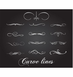 typographic design elements and curve lines vector image