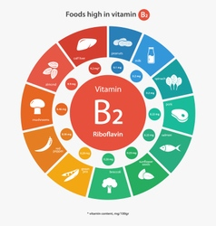Foods high in vitamin b2 vector