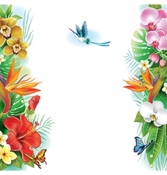 Border from tropical flowers and leaves vector image
