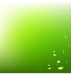 Green background with water drops vector