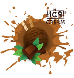 ice cream chocolate ball dessert choose your taste vector image vector image